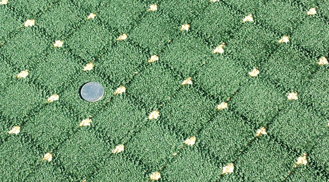 Green Cut Uncut Commercial Carpet With Yellow Pin Dot