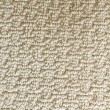 Shaw's Eagle Lake E0136 Carpet - Color 103 Angel Wing 2