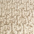 Shaw's Eagle Lake E0136 Carpet - Color 103 Angel Wing 3