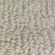 Shaw's Eagle Lake E0136 Carpet - Color 103 Angel Wing 4
