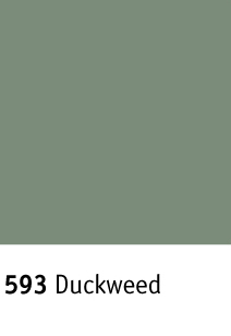 Johnsonite ColorMatch Color Palette B Duckweed 593