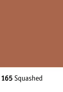 Johnsonite ColorMatch Color Palette B Squashed 165