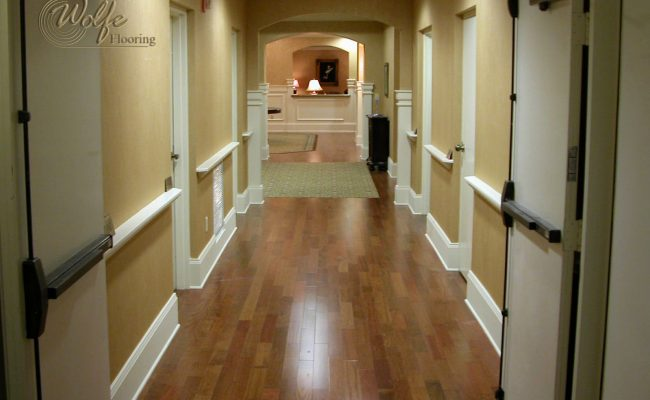 5S Clearwater Senior Living 16 Engineered Hardwood with Carpet in Corridor