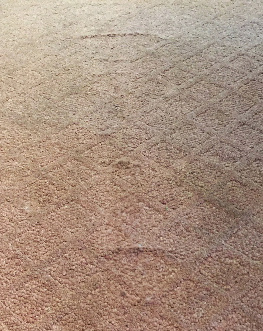 Carpet Delamination Caused by Goof Off - Wrinkles with Sharp Peaks